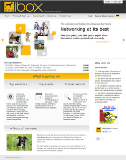 dog-ibox website design and development