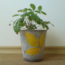 flowerpot + leaves