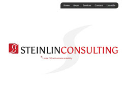 Web design, development for the Steinlin Consulting website